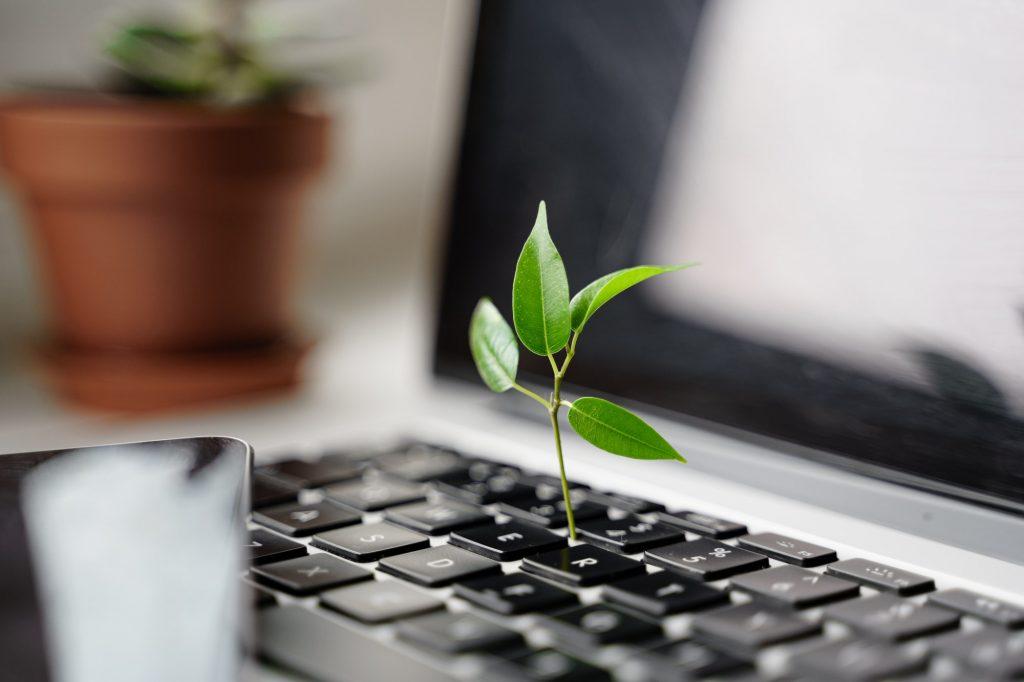 Digital sustainability. Tech carbon footprint. Green computing